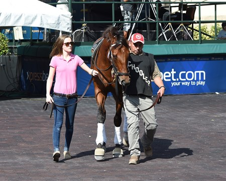 Keen Ice - Gulfstream Park - January 26, 2017