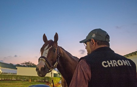 California Chrome  & Alan Sherman @ Gulfstream Park  Jan 7 2017