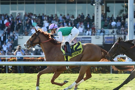 Suffused wins the 2017 La Prevoyante