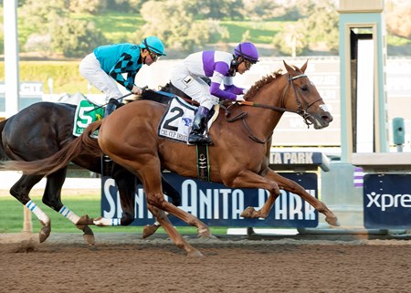 Ann Arbor Eddie wins the 2017 California Cup Derby