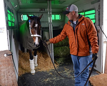Songbird prepares to leave WinStar for a van ride to the Lexington airport and flight to California on Jan. 23, 2017, at the WinStar training barn near Versailles, Ky.