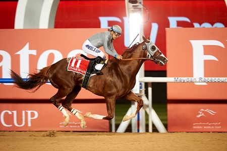 California Chrome pushed his earnings past $12 million with his Dubai World Cup victory