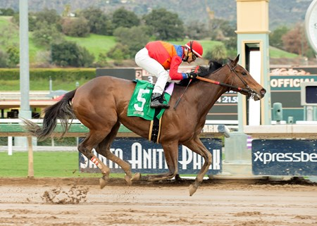 Watch This Cat and jockey Corey Nakatani win the Grade III, $100,000 Las Cienegas Stakes, Saturday, January 7, 2017 at Santa Anita Park, Arcadia CA.