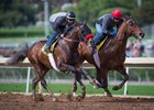 Semper Fortis (outside) and Ralis (inside) work at Santa Anita Park Jan. 21