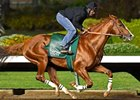 California Chrome Logs Final Los Alamitos Workout