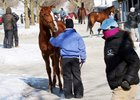 Optimism in the (Cold) Air at Keeneland