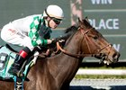 Sircat Sally Stays on Turf for Providencia