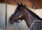 Prayer for Relief Retired, Will Stand at Pleasant Acres