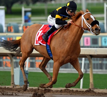 Finest City wins the 2017 Santa Monica Stakes (G2) at Santa Anita Park