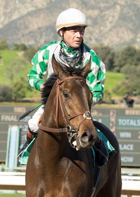Sircat Sally wins the 2017 California Cup Oaks