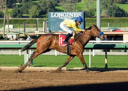 Vale Dori wins the 2017 La Canada Stakes