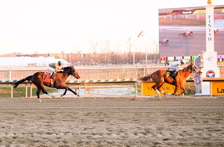 Nicamore wins a maiden claiming race at Laurel Park