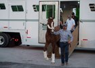 California Chrome arrives at Gulfstream Park Jan. 6