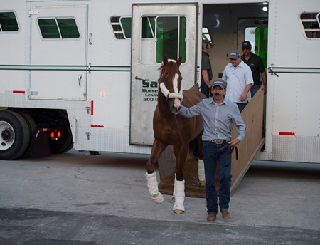 California Chrome getting off the van at Gulfstream Park  Jan 6 2017
