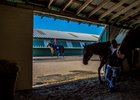 A barn on the Fair Grounds Race Course & Slots backstretch