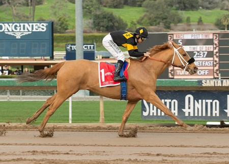 Seltzer Thoroughbreds' Finest City and jockey Mike Smith win the Grade II, $200,000 Santa Monica Stakes, Saturday, January 21, 2017 at Santa Anita Park, Arcadia CA.