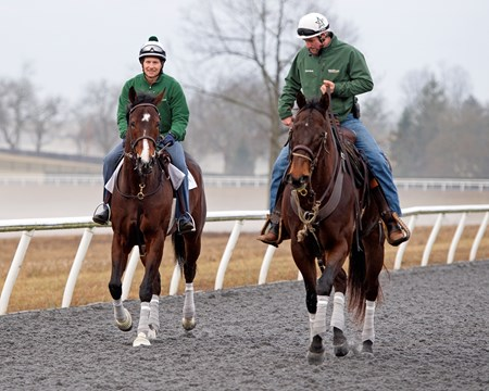 Songbird goes to training track with Travis Warnken up and Destin Heath on pony Stumbles on Jan. 22, 2017, at the WinStar training barn near Versailles, Ky.