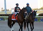 Jerkens Mulling Post-Pegasus Options for Shaman Ghost