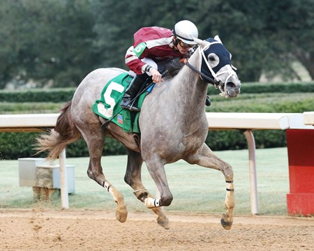 Chanel's Legacy wins the 2017 Dixie Belle Stakes