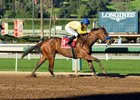 No catching Vale Dori in the La Canada