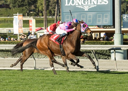 Ashleyluvssugar wins the 2017 California Cup Turf Classic