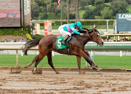 Gormley and jockey Victor Espinoza, outside, overpower American Anthem (Mike Smith), inside, to win the Grade III, $100,000 Sham Stakes, Saturday, January 7, 2017 at Santa Anita Park, Arcadia CA.