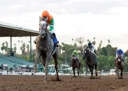 Unique Bella wins the 2017 Santa Ynez Stakes (G2) at Santa Anita Park