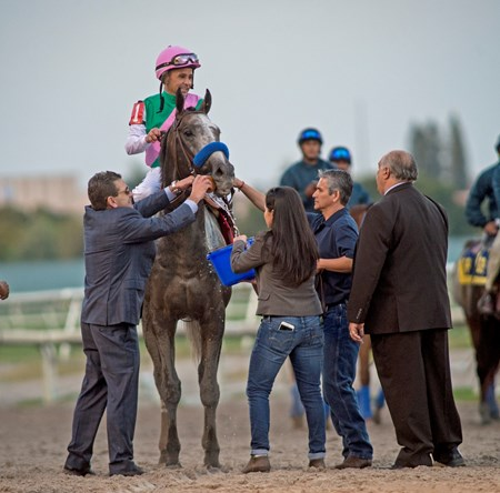 Arrogate wins the 2017 Pegasus World Cup
