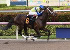 Greenpointcrusader wins a Jan. 27 allowance-optional claiming race at the Fred W. Hooper distance at Gulfstream Park