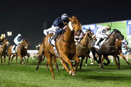 Medicean Man (GB) wins the 2017 Meydan Sobha Trophy