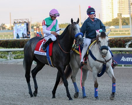 Arrogate wins the 2017 Pegasus World Cup at Gulfstream Park with Mike Smith up for trainer Bob Baffert and owner Juddmonte Farms, 2017 Pegasus World Cup