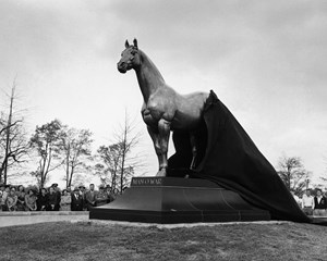 Today, Man o' War greets 100s of thousands of visitors to the Kentucky Horse Park.