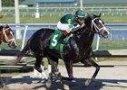 Battalion Runner wins a 1 1/16-mile optional-claiming contest by 1 1/4 lengths Feb. 3