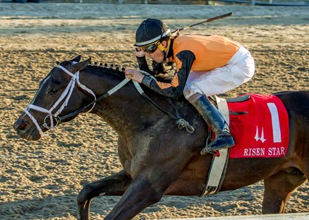 Girvin's win in the Risen Star set the colt on the Kentucky Derby trail
