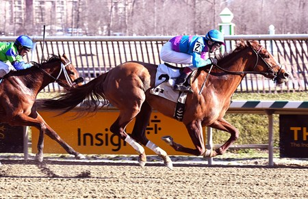 Tickled Pink - Laurel Park - Feb. 19, 2017