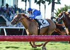 Almanaar wins the 2017 Gulfstream Park Turf Handicap