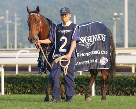 Designs On Rome wins the Hong Kong Cup.