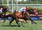 Kitten's Cat takes the Feb. 4 Kitten's Joy Stakes at Gulfstream