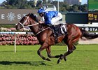 Winx Returns in Grand Fashion