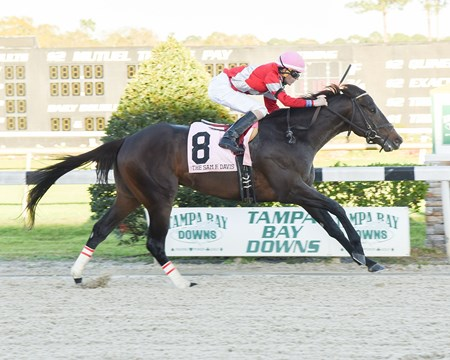 McCraken wins the 2017 Sam F. Davis
