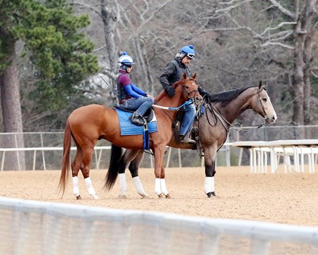 Gun Runner - Oaklawn Park - Feb. 13, 2017