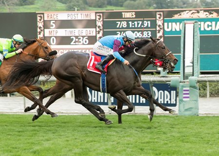 Bolo gets up in time to repeat in the Arcadia Stakes
