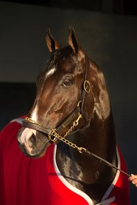 Classic Empire refused to breeze on multiple occasions, but got back to work March 22