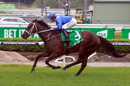 Winx wins the 2017 Chipping Norton Stakes at Randwick