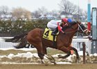 Send It In Looks to Ride Inner Track Success in Stymie
