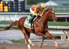 Irish War Cry Scores Upset in Holy Bull