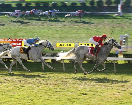 Harpoon #1 with Samuel Camacho, Jr. riding won the Gray Ghost Starter Handicap for Gray Thoroughbreds on Halloween, October 31, 2015 at the Monmouth Park at the Meadowlands All-Turf Meet in East Rutherford, New Jersey.  Second was #6 Hiram with Scott Spieth riding.
