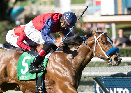 Miss Sunset wins the 2017 Sweet Life Stakes