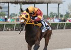Curlin's Approval wins the 1 1/16-mile Royal Delta Stakes at Gulfstream Park