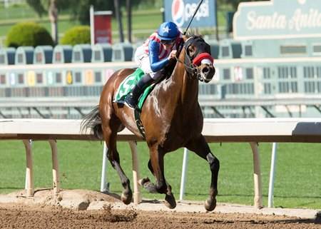 Iliad wins the 2017 San Vicente Stakes